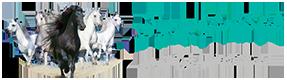 fengshuibartar-logo